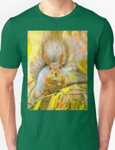 Red euroasian squirrel on the maple branch T-Shirt