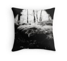 Padley Gorge Throw Pillow