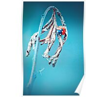 Ladybug crawling on a twig with blue background Poster