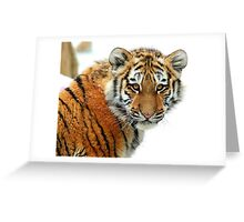 Have You Got My Lunch? Greeting Card
