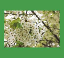 Dreamy White Blossoms - Impressions Of Spring Kids Clothes