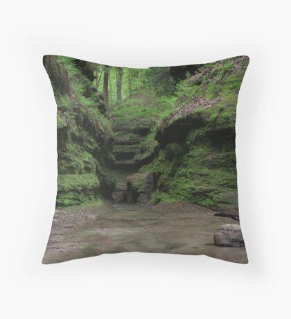 Rocky Hollow #2 Throw Pillow