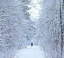 frozen winter road on the forest with along person by Oksana Ariskina