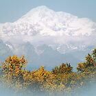Mt. Denali in Alaska by Patricia Montgomery