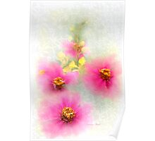 Lace Curtain Posies Poster