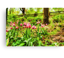 Dreamy Tulip Garden - Impressions Of Spring Canvas Print