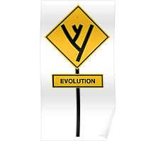 Evolution road sign Poster