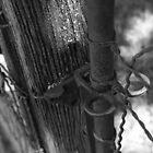 Gate by Cassy Greenawalt