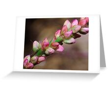 Pretty Little Stalk Greeting Card