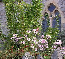 Furrough Cross Window by lezvee