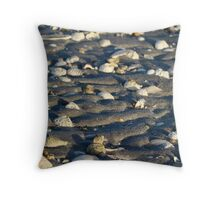 Shark Bay Shells Throw Pillow
