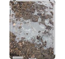 Ice iPad Case/Skin