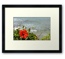 Red Blossom Framed Print