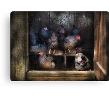 Animal - Chicken - The Hen House Canvas Print