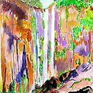 Queen Mary Falls Queensland by Virginia McGowan
