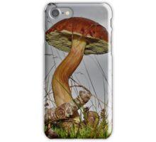 Xerocomus badius 2 [ Low angle ] iPhone Case/Skin