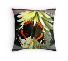 RED Admiral Butterfly. Throw Pillow