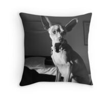 Getting Vocal Throw Pillow