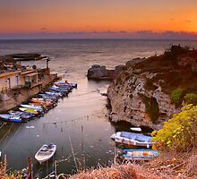 Fishermen Harbor  by Tony Elieh