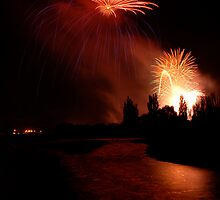 Pohutukawa Firework by Ken Wright