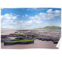 slimey green mud banks at Beal beach Poster