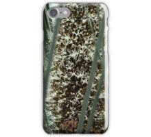 Xanthorrhoea Semiplana in Bloom iPhone Case/Skin