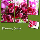 Blooming Lovely by Janys Hyde