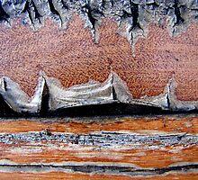 Desert Landscape...... by Kathie Nichols