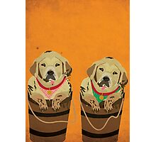 Illustration of Dogs Photographic Print