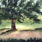Willow Oak at Sundown by LinFrye