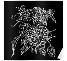 The Plant (black) Poster