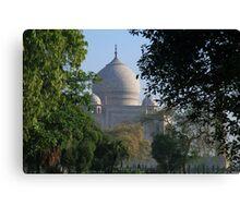 The Taj amongst the trees. Canvas Print