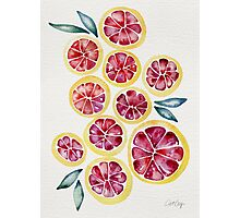 Sliced Grapefruits Watercolor Photographic Print