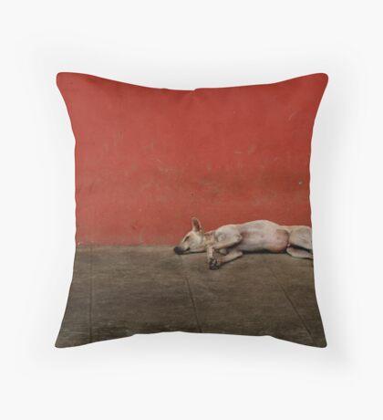 Sleeping Dogs Lie Throw Pillow