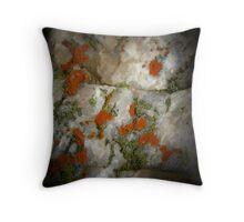 Lichen on Quartz Throw Pillow