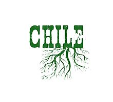 Chile Roots Photographic Print