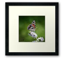 You're My Butterfly Framed Print