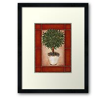 Potted Topiary - Suspended Floral Framed Print