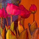 Tulips by Donna Grayson