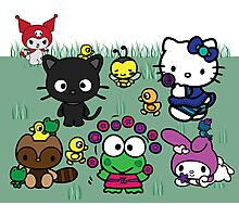 Hello Kitty and Friends Photographic Print