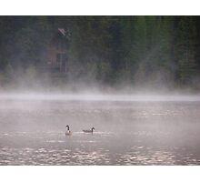 Geese in the Mist Photographic Print