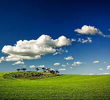 Dimboola in Spring. by Victor Pugatschew