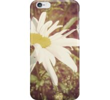 Big Chamomile Retro effect 2 iPhone Case/Skin