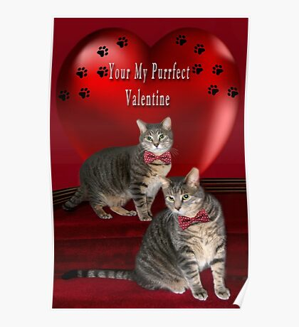 ❁ ♥¸.•*AM I YOUR PURRFECT VALENTINE?❁ ♥¸.•* Poster