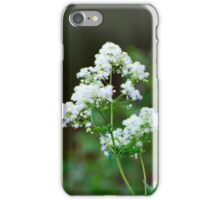 Tall Meadow Rue iPhone Case/Skin