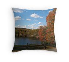 Autumn Colors II Throw Pillow