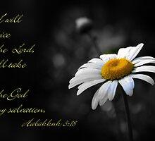 Habakkuk 3:18 by Julie's Camera Creations <><