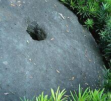StoneWheel by Zack Nichols