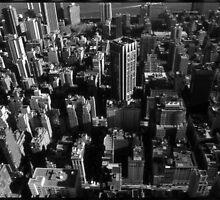 Manhattan, NY, 2002 by Dana L