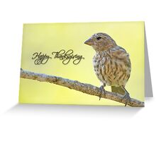 Happy Thanksgiving Finch Greeting Card